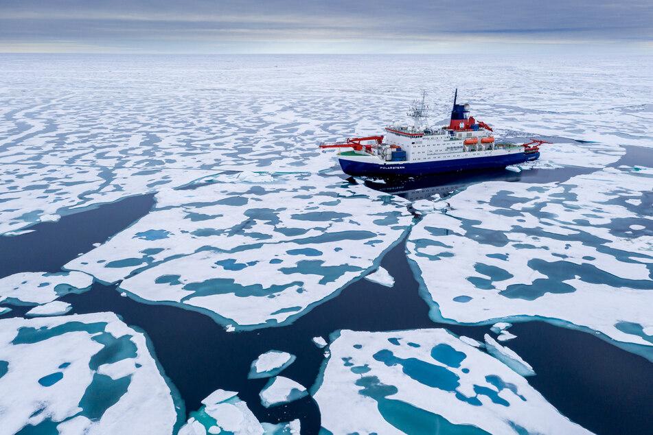 """Nach einem Jahr in der Arktis: Die """"Polarstern"""" läuft im Heimathafen ein"""