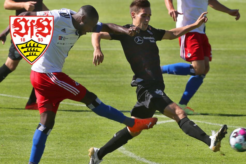 VfB Stuttgart überzeugt mit Offensiv-Waffen im Härtetest gegen den HSV