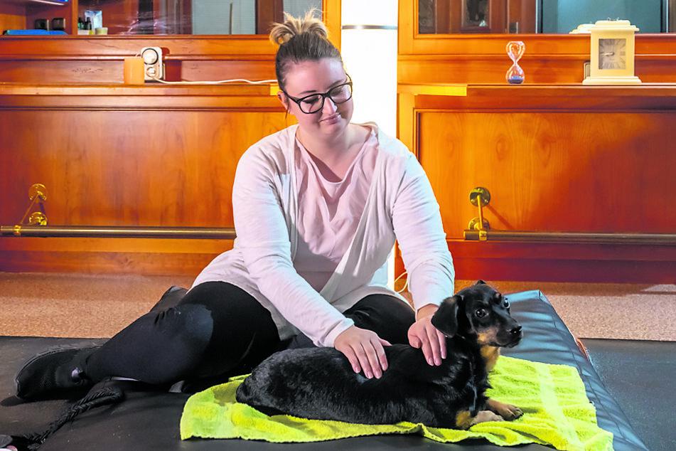 Julia Friedel massiert den Mischling Pablo. Sie plant Räume im Hotel zu einer Tierheilpaxis auszubauen.