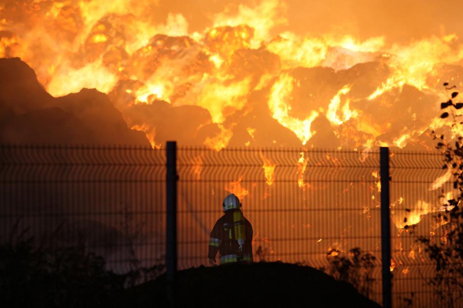 Feuerwehren mehr als 24 Stunden im Einsatz: Firma für Holzpellets in Flammen