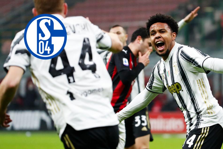 FC Schalke 04 gibt Weston McKennie endgültig an Juventus Turin ab!