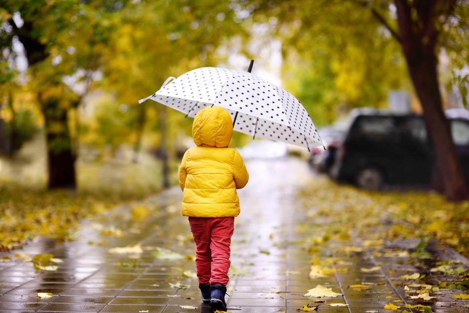 In Sachsen sollten Gummistiefel, Regenjacke und Schirm beim Spaziergang nicht fehlen. (Symbolbild)