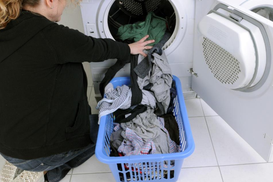 Einer Haushaltsexpertin zufolge soll ein in Weichspüler getauchter Schwamm gegen muffige Wäsche aus dem Trockner helfen. (Symbolbild)