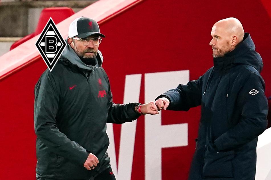 Trainer-Coup: Hat Gladbach Rose-Nachfolger gefunden?