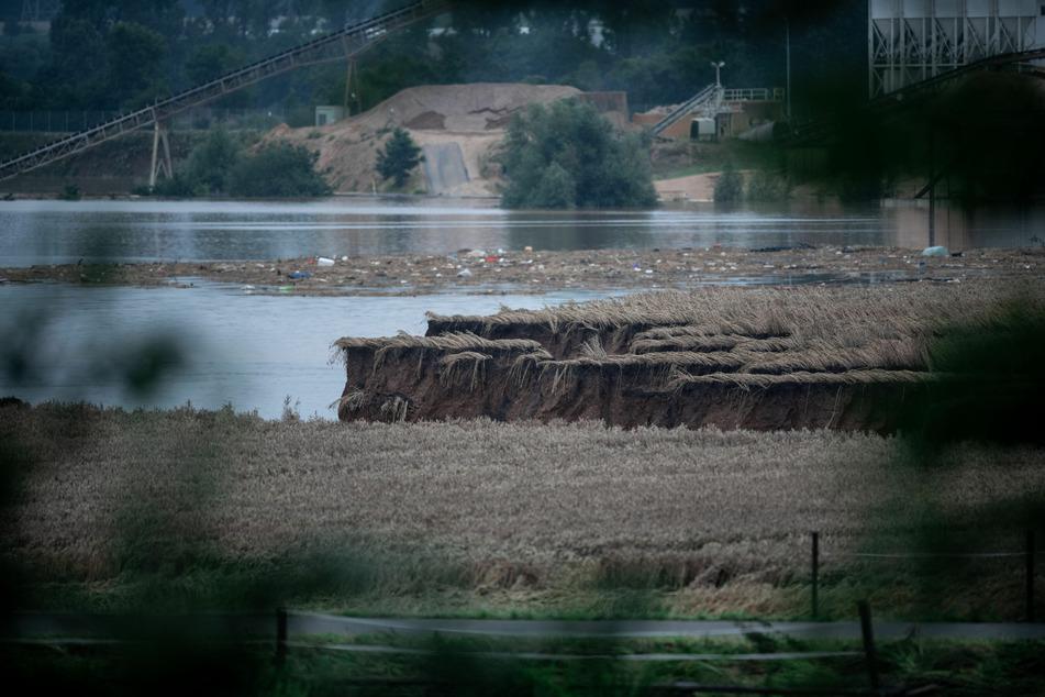 Auch ein Feld ist im Ortsteil Blessem durch das Wasser abgesackt. Außerdem wird Treibgut über die Erft auf das Feld gespült.
