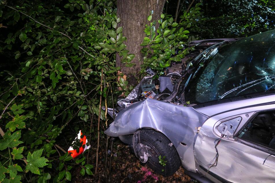 Nachdem das Auto bereits an zwei Bäumen und einem Eisentor entlang schrammte, kam es durch einen Aufprall an einem Baum zum Stehen.