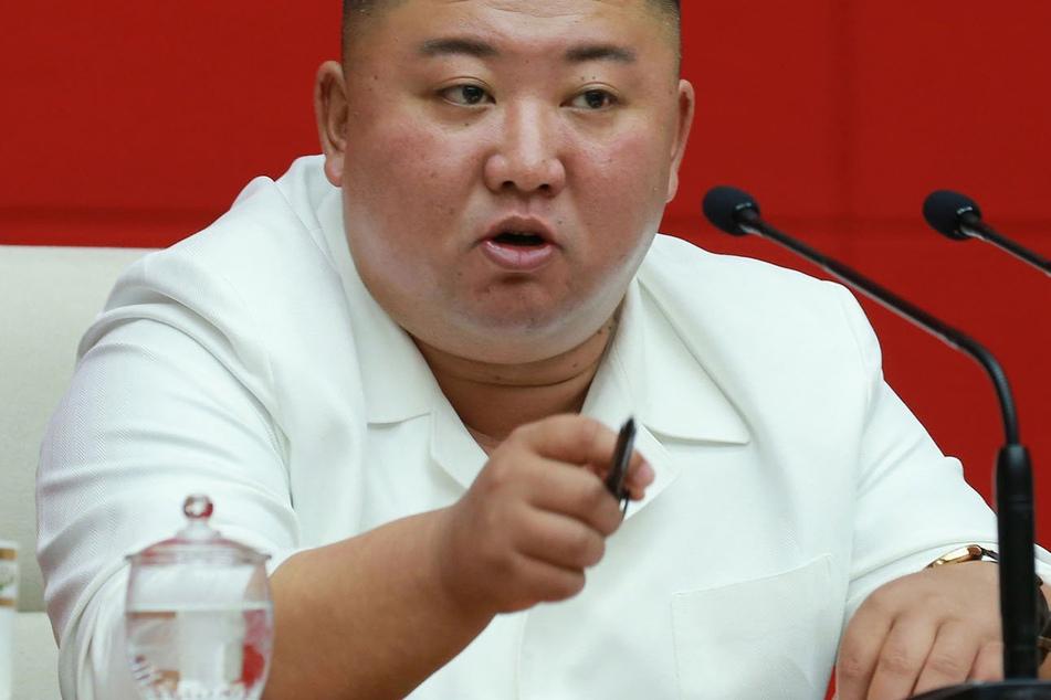 Kim Jong-un (36) hat das Halten von Haustieren per Gesetz verboten.