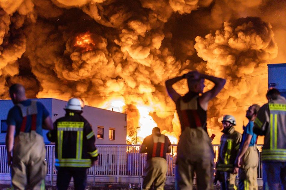 Riesige Rauchwolke am Himmel: Flammen-Inferno in Papier-Recyclingfirma