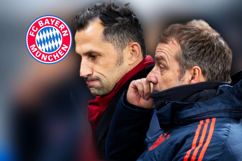 Bayern-Fans machen Salihamidzic zum Buhmann: Flick verurteilt Anfeindungen scharf