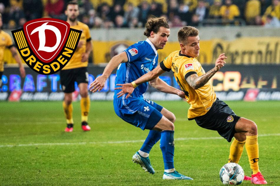 Dynamo-Neuzugänge können sich sehen lassen! Geballte Erfahrung für Dresden