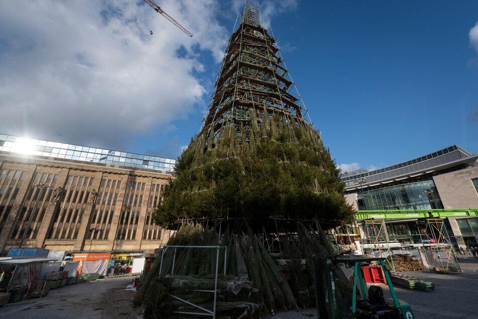 In Dortmund wird jährlich Deutschlands größter Weihnachtsbaum aufgestellt.