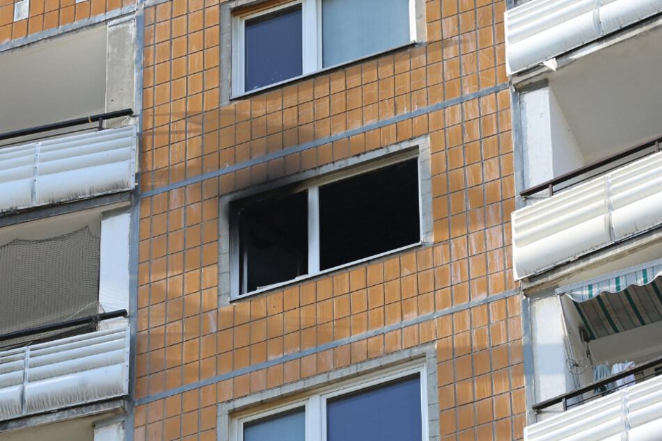Rauch steigt aus dem Fenster im 15. Stock des Wohnhochhauses am Jacob-Winter-Platz.