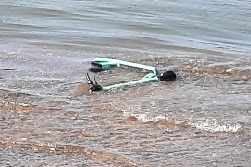 Laut Schätzungen liegen derzeit rund 500 E-Scooter auf dem Grund des Rheins. Eine Bergung war kürzlich aufgrund eines fehlenden Konzepts gescheitert.