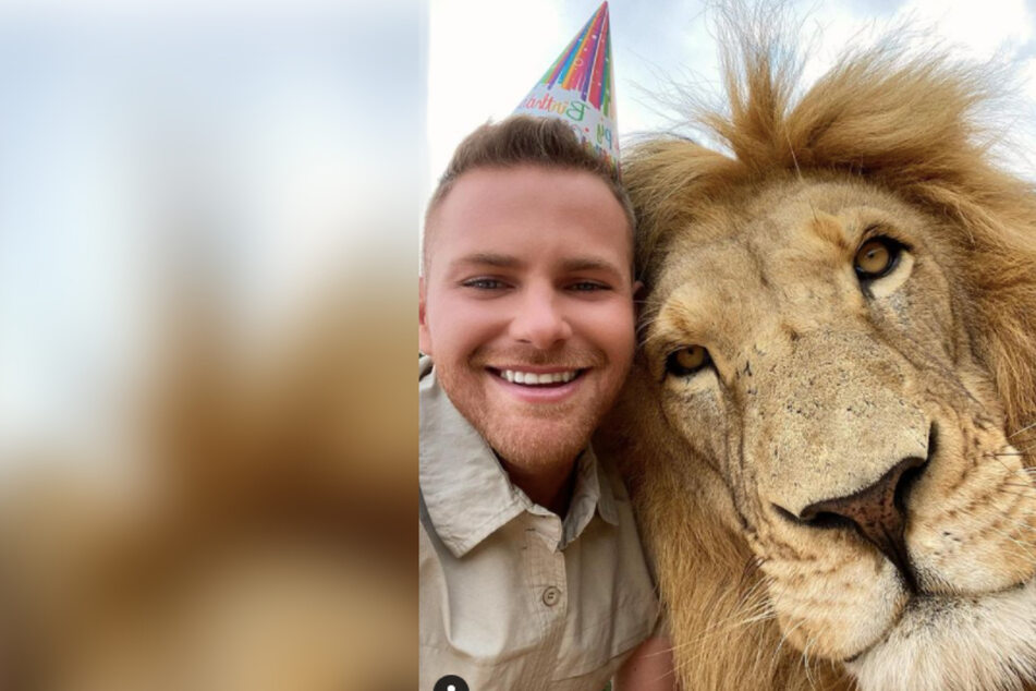Zookeeper has a rip-roaring birthday with his lion best friend