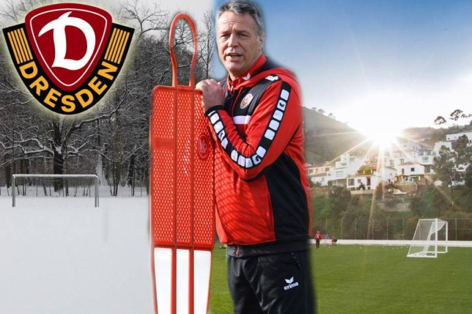 Wird der Winter jetzt Dynamos härtester Gegner?