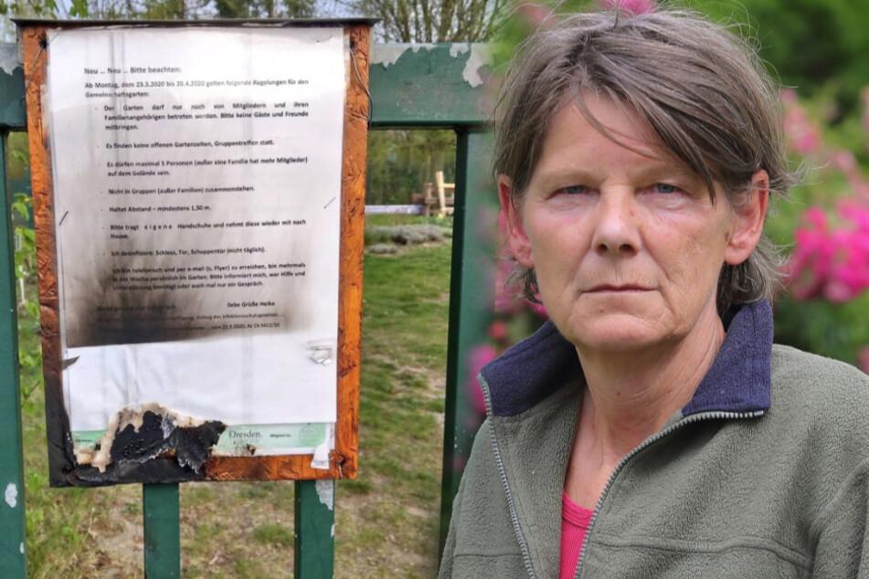 Brandanschläge, Nazi-CD, Patrone: Widerliche Angriffe auf Gemeinschaftsgarten Prohlis