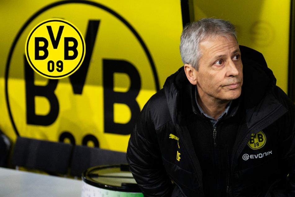 BVB muss nach Bayern-Pleite und Favre-Wirrwarr in Paderborn um die Champions League kämpfen