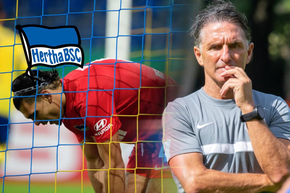 Schlägt Hertha jetzt auf dem Transfermarkt zu? Labbadia bremst Erwartungen