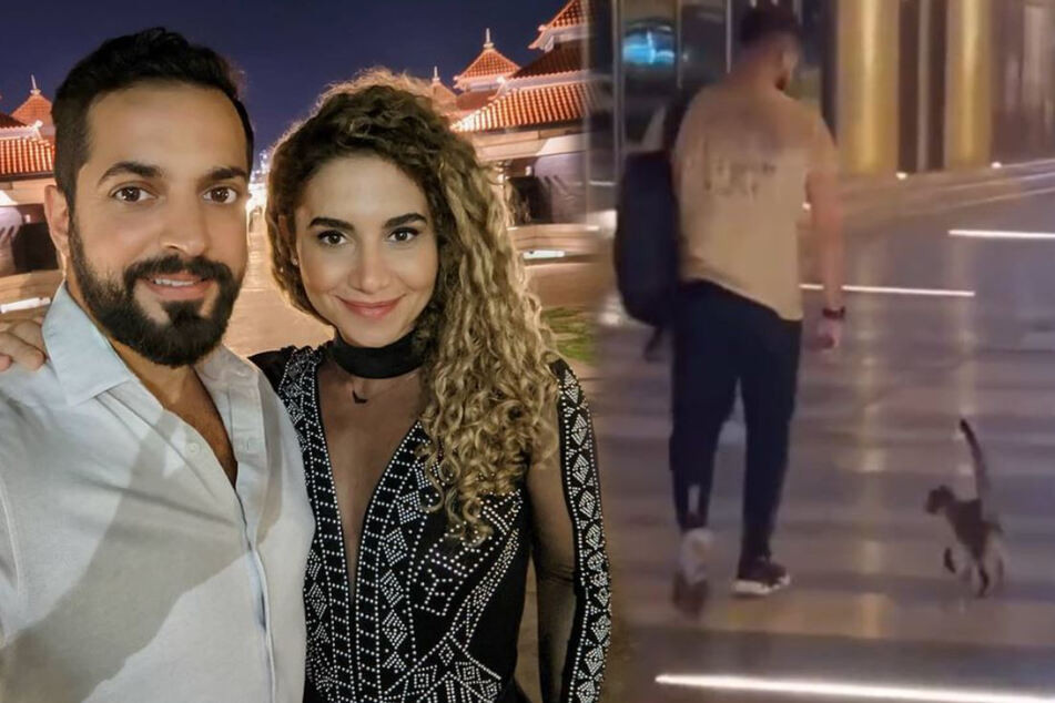 Basil Akwan and his girlfriend each took in one of the cats.