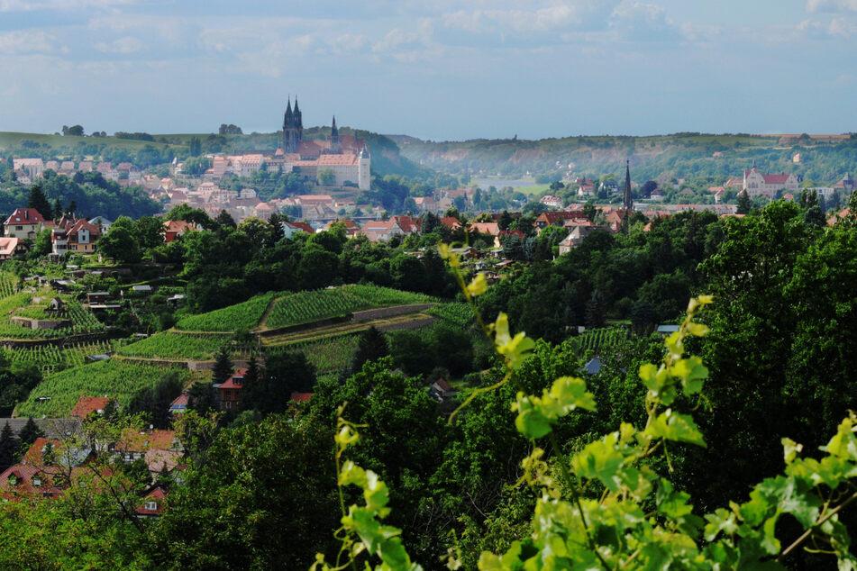 Der wunderbare Blick auf Meißen vom Spaargebirge aus.