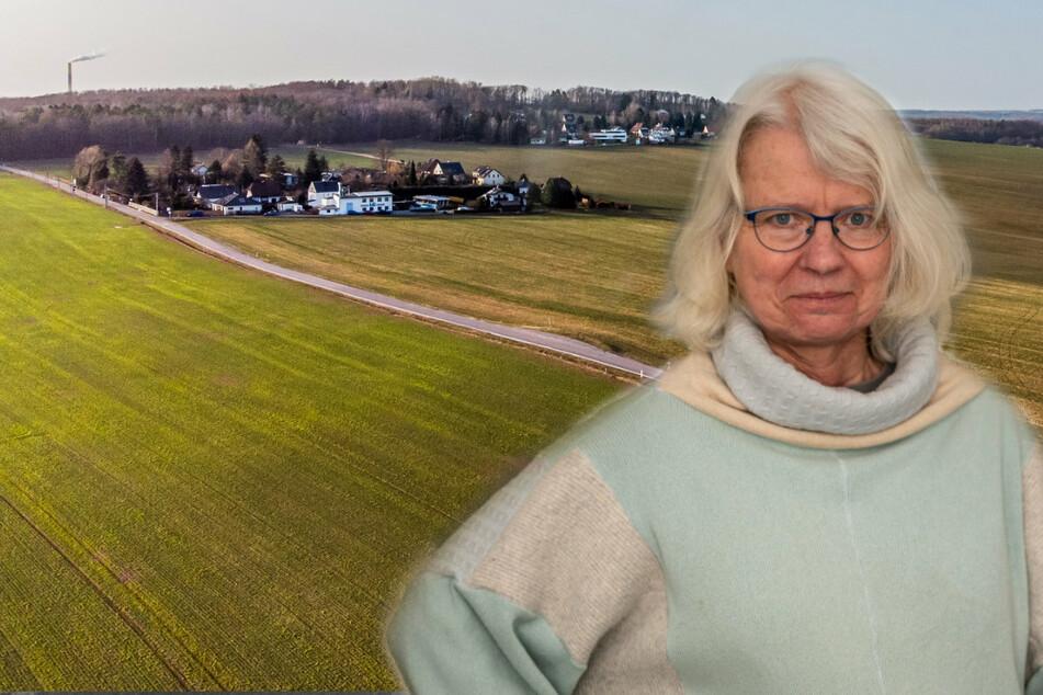 Chemnitz: Gefahr für den Wald? Grüne wollen Südring-Weiterbau stoppen