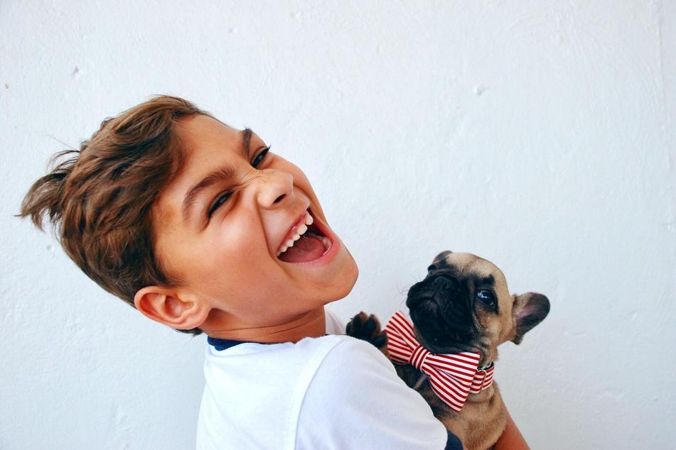 Hunde und Kinder können ein gutes Team sein - wenn einige wichtige Verhaltensregeln beachtet werden.