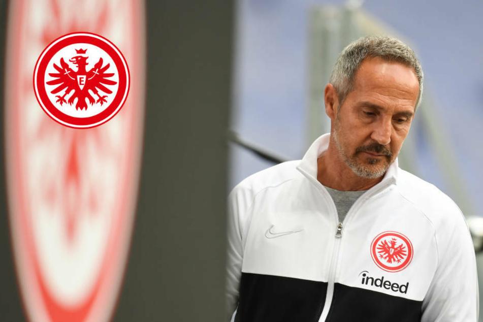 Adi Hütter: Keine großen Veränderungen im Eintracht-Kader geplant