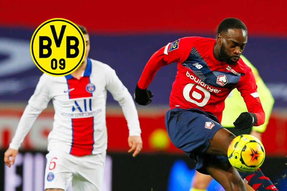 Hat der BVB Sancho-Nachfolger an der Angel? Kommt ein französischer Nationalspieler?
