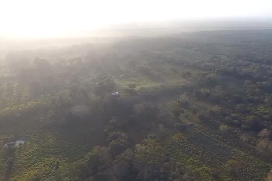 Wahnsinns-Fund: Wohl älteste und größte Monumentalanlage der Maya entdeckt