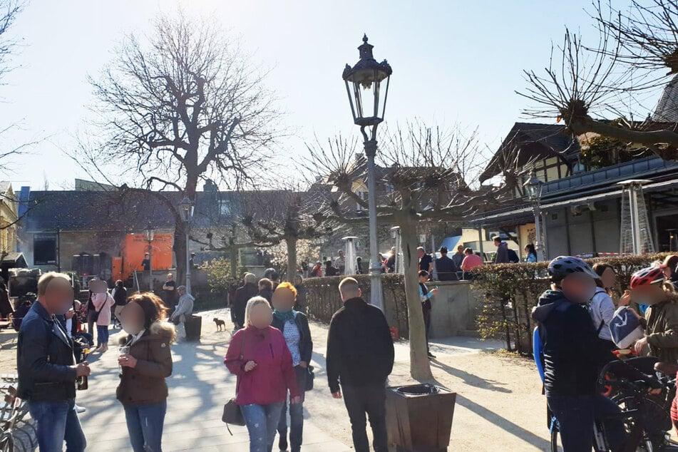 Der Dresdner Schillergarten lud bei Sonnenschein zum geselligen Beisammensein ein.
