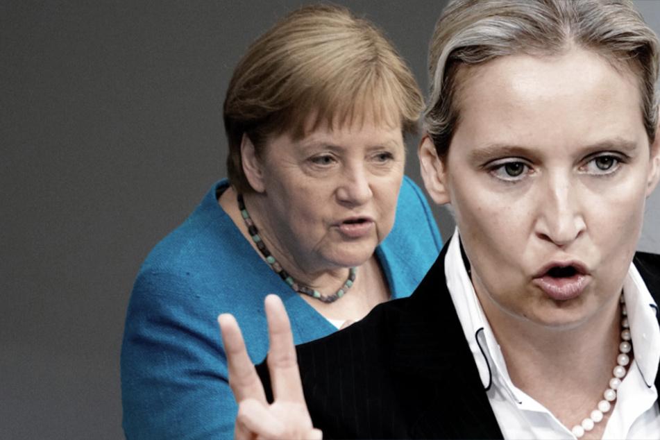 """AfD-Chefin Weidel rechnet mit Angela Merkel ab: Kanzlerin hätte """"das Land tief gespalten"""""""
