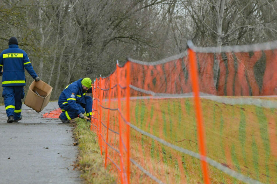Zwei THW-Mitarbeiter errichten einen Schutzzaun gegen die Afrikanische Schweinepest. Nach dem Auftreten der Seuche in Brandenburg muss das Gebiet schnell identifiziert und abgegrenzt werden. (Symbolfoto)