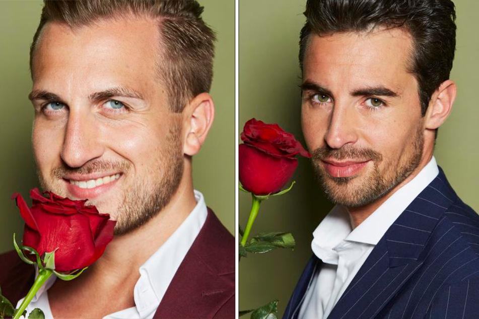 Vertriebler Maximilian (25, l.) aus Köln und Model Dario (33) aus München. (Fotomontage)