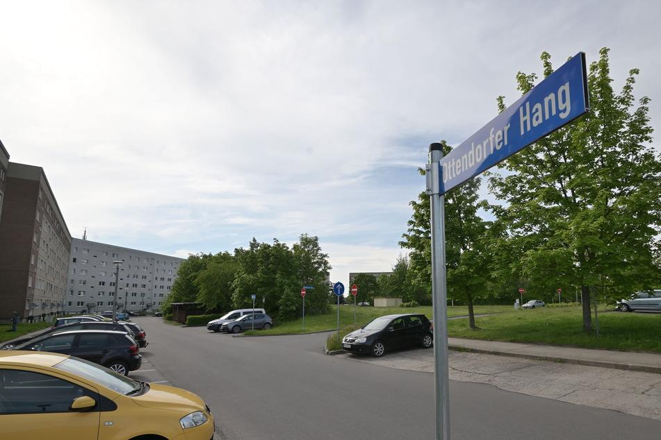 In diesem Wohngebiet am Ottendorfer Hang in Hainichen soll sich das Verbrechen abgespielt haben.