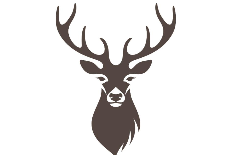 Hier gibt der Hirsch den Ton an (Symbolbild).