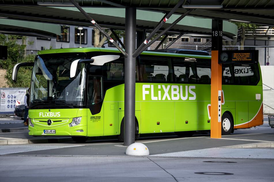 Schon ab kommender Woche sollen wieder Flixbusse durch Deutschland fahren.
