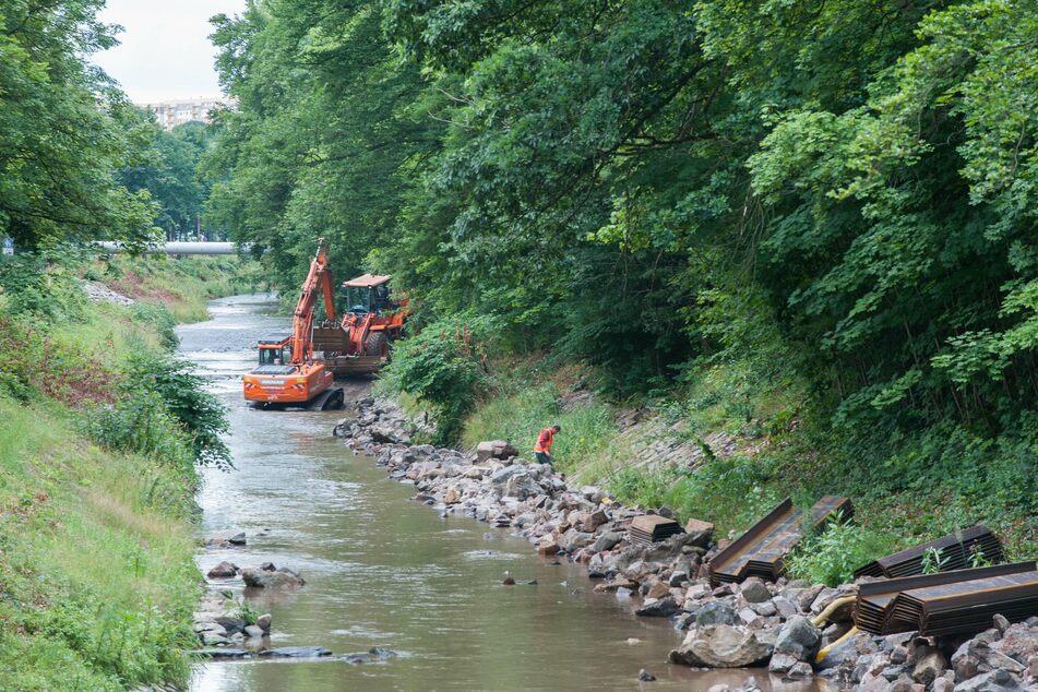Die Chemnitz soll fit für die Zukunft gemacht werden. Dafür wird derzeit ein Gewässerentwicklungskonzept erstellt. (Archivbild)