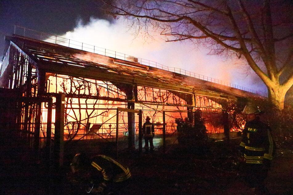 Feuerwehrleute stehen nach Löscharbeiten vor dem Affenhaus im Krefelder Zoo. (Archivbild)