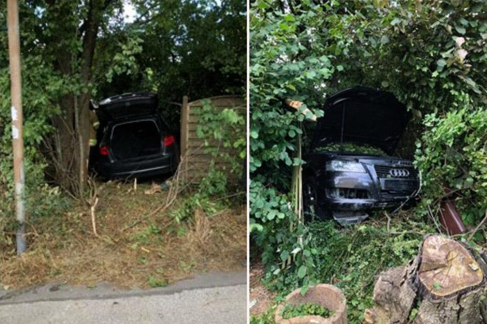 Der Audi hat einen Zaun durchbrochen und ist in einer Hecke zum Stillstand gekommen. (Fotomontage)