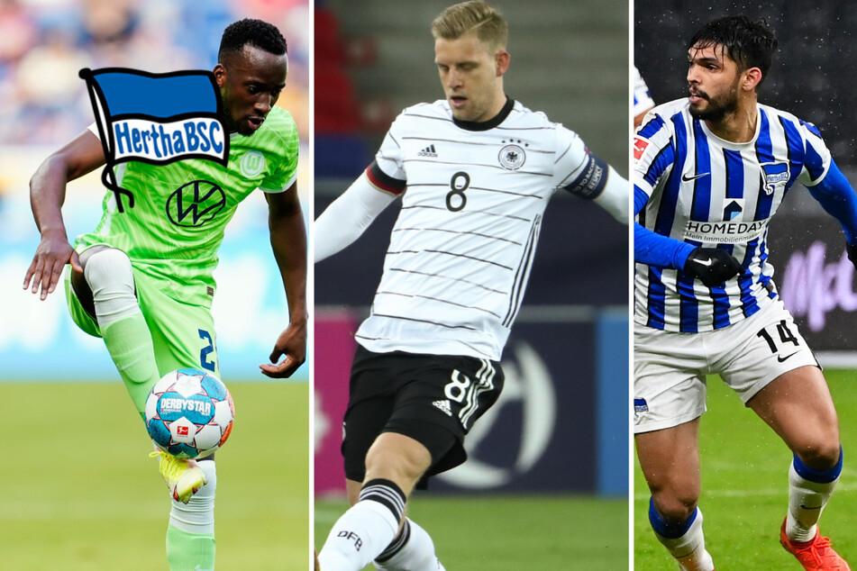Wen Hertha jetzt gut gebrauchen könnte: So läuft es für die sieben Leihspieler