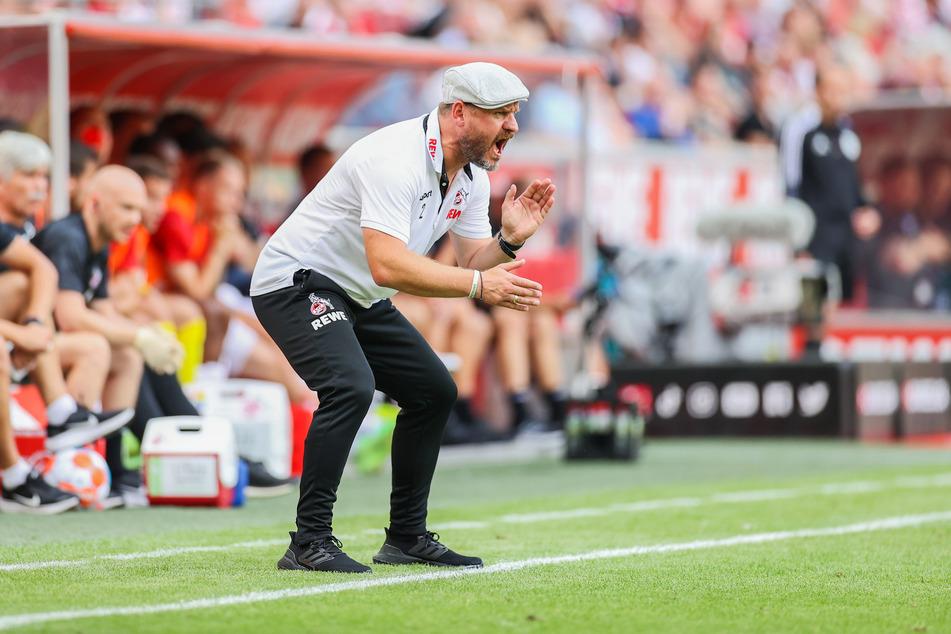 Unermüdlicher Antreiber am Spielfeldrand: Der neue FC-Trainer Steffen Baumgart (49) hat den zuletzt kriselnden Torjäger wieder in die Spur gebracht.