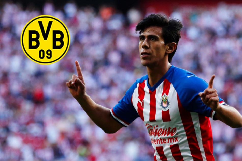 BVB sucht Backup-Stürmer für Haaland: Kommt mexikanisches Mega-Talent?