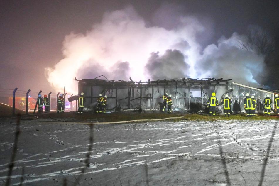 Meterhohe Flammen, überall Rauch: Lagerhalle steht in Vollbrand!