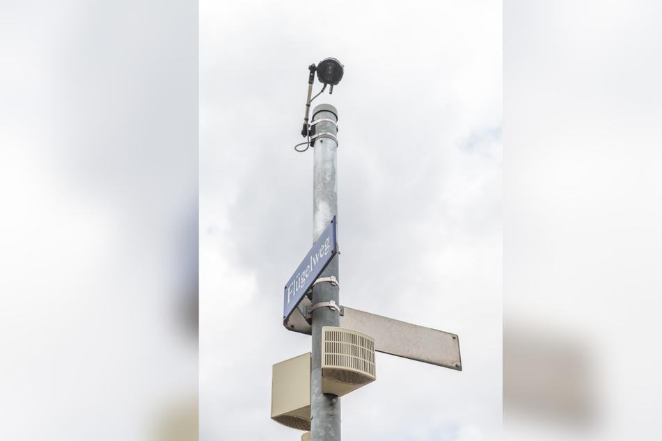 An der Kreuzung Hamburger Straße/Flügelweg erkennt eine Wärmebildkamera, dass Fußgänger und Radfahrer an der Ampel warten.