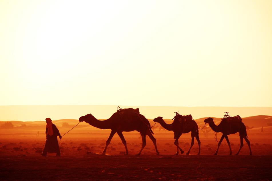 Beduinen schützen sich mit ihrer Kleidung gegen Hitze. (Symbolbild)