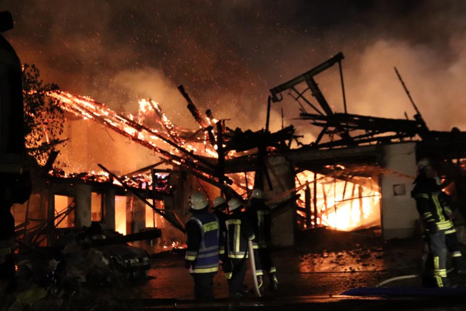 Die Lagerhalle brannte komplett nieder.