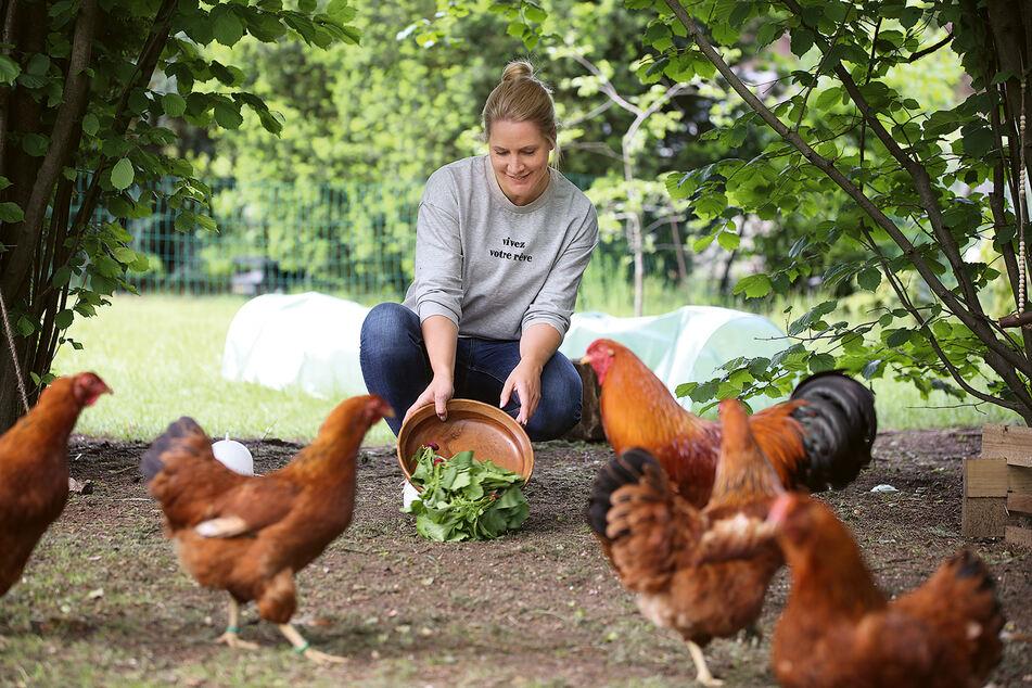 Moderatorin Judith Rakers (45) füttert ihre Hühner, die wie Haustiere für sie sind.