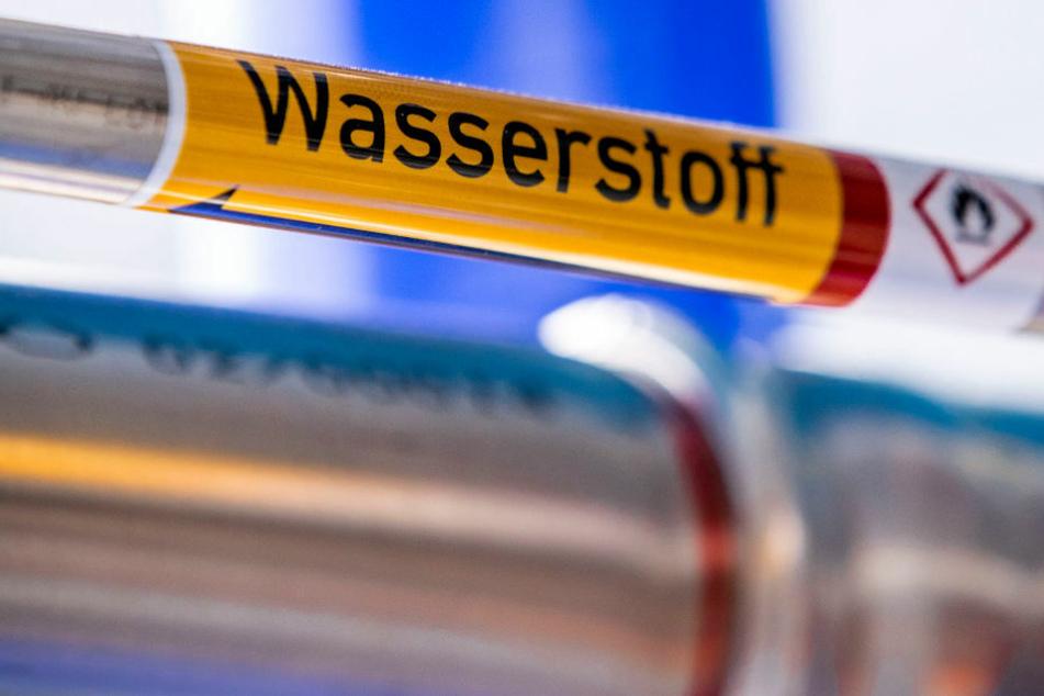 Keine Kohle mehr: In der Lausitz soll Wasserstoff-Forschung betrieben werden