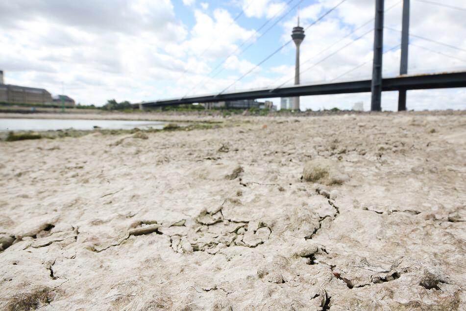 2020 hatten sich am Düsseldorfer Rheinufer durch die Dürre in NRW Risse am trockengefallenen Ufer des Rheins im Sand gebildet.