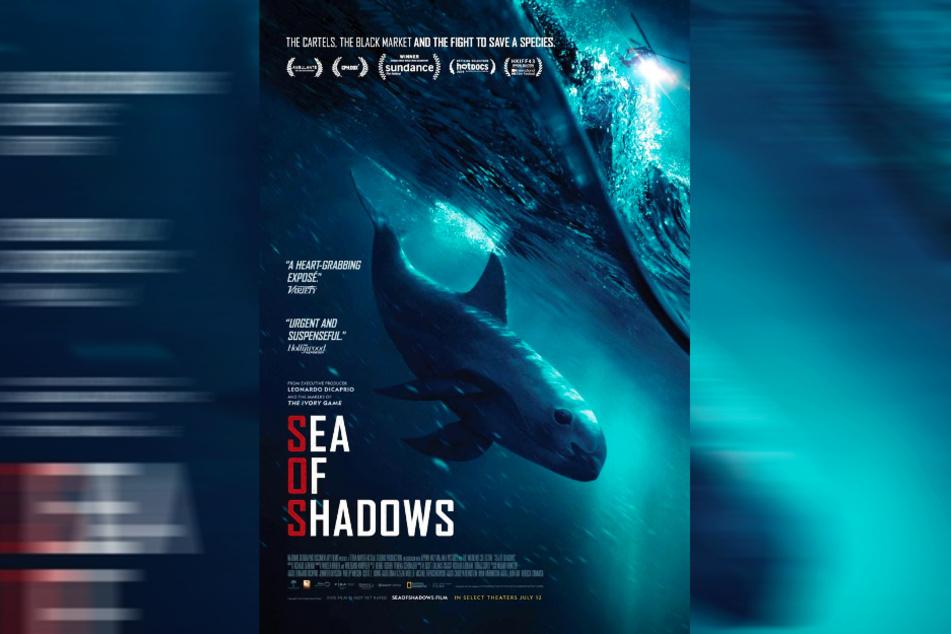"""Der preisgekrönte Dokumentarfilm """"Sea of Shadows"""" soll die Welt aufrütteln."""